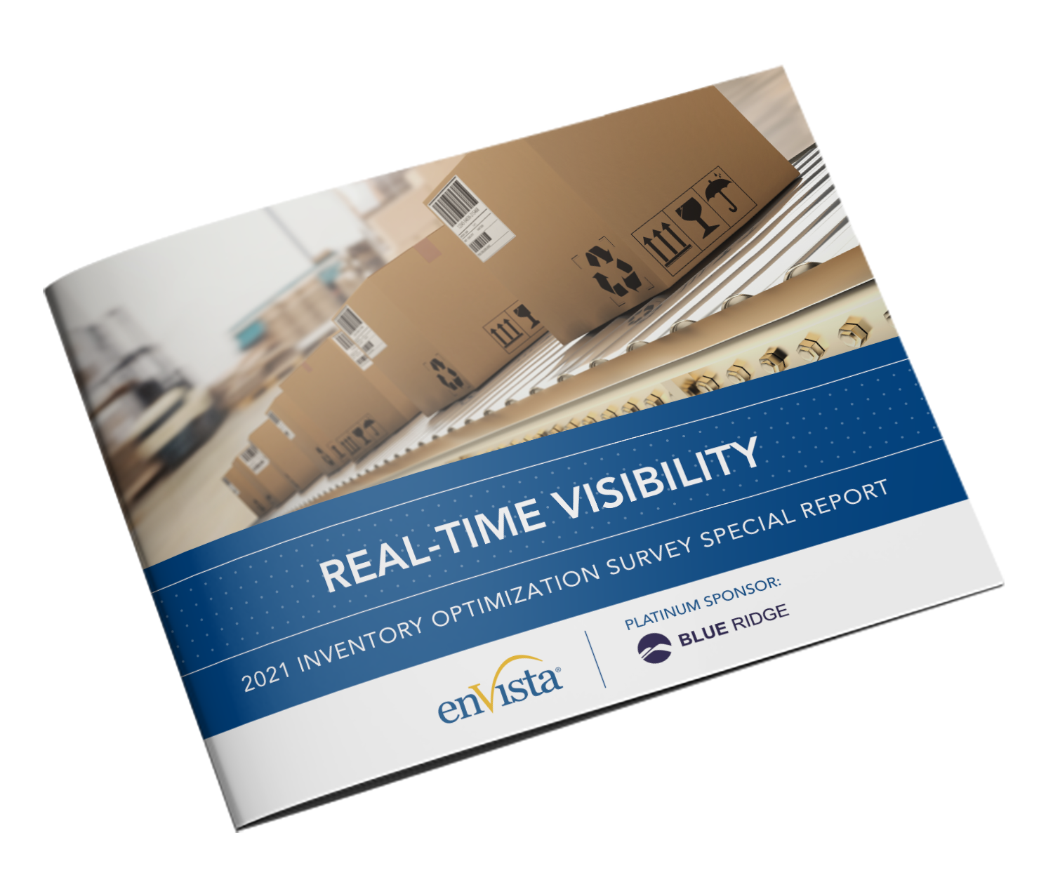 Real-Time Visibility Special Report Cover
